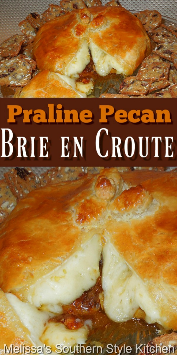 Add this ooey gooey Praline Pecan Brie en Croute will make a decadent addition to your holiday starter menu #pralinepecans #praline #brieencroute #briecheeserecipes #holidayrecipes #pralinepecanbrieencroute #puffpastryrecipes #pralines #southernfood #southernrecipes