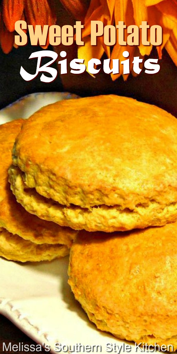 Turn up your brunch menu with these fall-ready homemade Sweet Potato Biscuits #sweetpotatobiscuits #sweetpotatoes #southernbiscuits #fluffysouthernbiscuits #sweetpotatorecipes #biscuitrecipes #brunch #holidaybrunch #holidaybaking #fallbaking #thanksgiving #scones #southernfood #southernrecipes