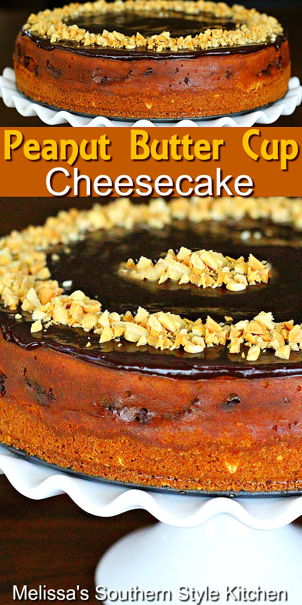 You'll be the dessert hero when you make this luscious Peanut Butter Cup Cheesecake filled with Reese's cups #peanutbuttercups #peanutbuttercheesecake #cheesecakerecipes #reesescups #cheesecakes #chocolateganache #desserts #dessertfoodrecipes #southernfood #southernrecipes #holidaydesserts #holidayrecipes