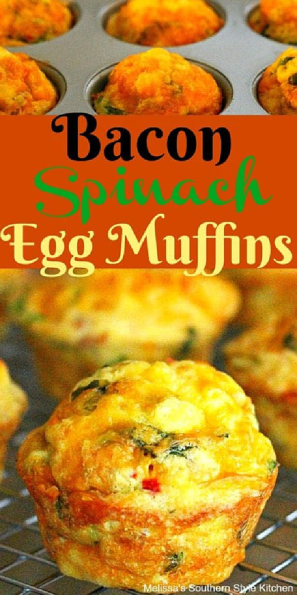 These single serving Bacon Spinach Egg Muffins are made in a muffin pan #eggmuffins #eggs #bakedeggs #muffinpaneggs #brunch #breakfast #eggrecipes #muffins #baconandeggs #baconspinacheggmuffins #spinachmuffins