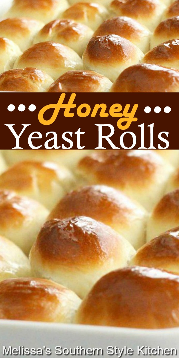 Fluffy with just a hint of honey, these yeast rolls are a spectacular bread choice at any meal #honeyyeastrolls #dinnerrolls #honeyrolls #rolls #breadrecipes #southernfood #homemadebread #dinnerideas #southernrecipes