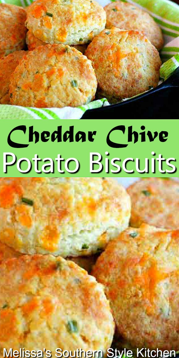 Enjoy these Cheddar Chive Potato Biscuits with butter straight from the oven #cheddarbiscuits #biscuits #potatobread #potatobiscuits #biscuitrecipes #southernbiscuits #biscuitrecipes #southernfood #southernrecipes #potatoes