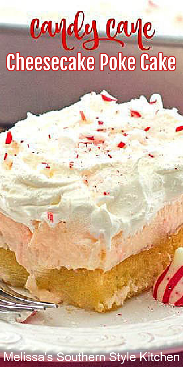 Treat yourself to a big piece of Candy Cane Cheesecake Poke Cake for dessert #pokecake #candycanes #cheesecake #peppermint #candycanepokecake #candycanecheesecake #desserts #dessertfoodrecipes #holidaybaking #holidays #christmascake #christmasdesserts #southernfood #southernrecipes