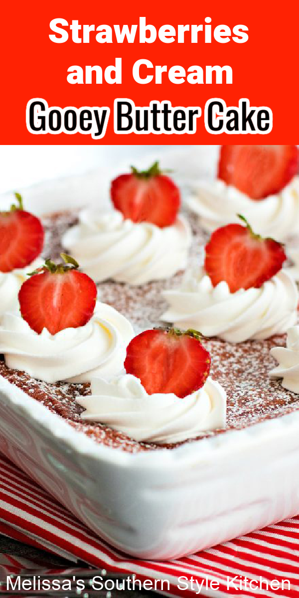 Ooey gooey delicious Strawberries and Cream Gooey Butter Cake #strawberriesandcream #gooeybuttercake #cakerecipes #strawberrycake #cakes #strawberry #desserts #dessertfoodrecipes #southernfood #southernrecipes