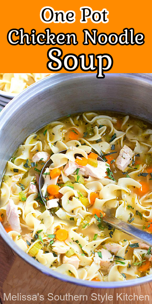 This homemade One Pot Chicken Noodle Soup will cure what ails you #chickennoodlesoup #chickenrecipes #easychickenrecipes #bestchickennoodlesoup #souprecipes #chickensoup #dinner #southernrecipes #easydinnerrecipes #onepotrecipes #eggnoodles