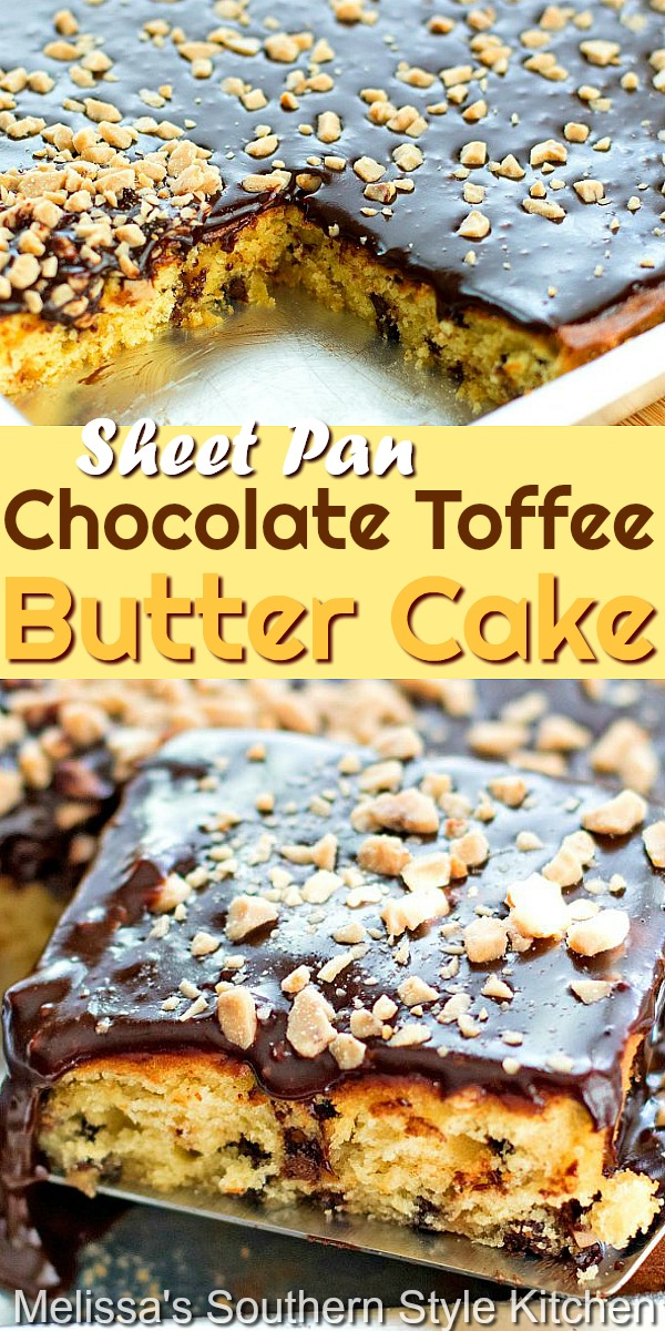 This made-from-scratch Chocolate Toffee Butter Cake is topped with a decadent homemade fudge frosting and a spin kling of toffee bits for crunch #toffeecake #buttercake #sheetcakerecipes #chocolatechipcake #cakeerecipes #fudgefrosting #chocolatecakefrosting #desserts #dessertfoodrecipes #holidaybaking #southernfood #southernrecipes