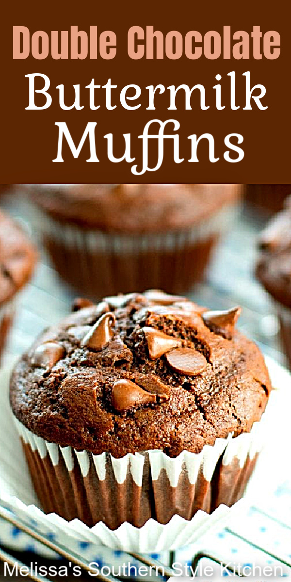 Treat yourself to a batch of these Double Chocolate Buttermilk Muffins #chocolatemuffins #chocolatedhipmuffins #doublechocolatemuffins #muffins #mujffinrecipes #brunch #breakfast #southernrecipes #southernfood #desserts #dessertfoodrecipes