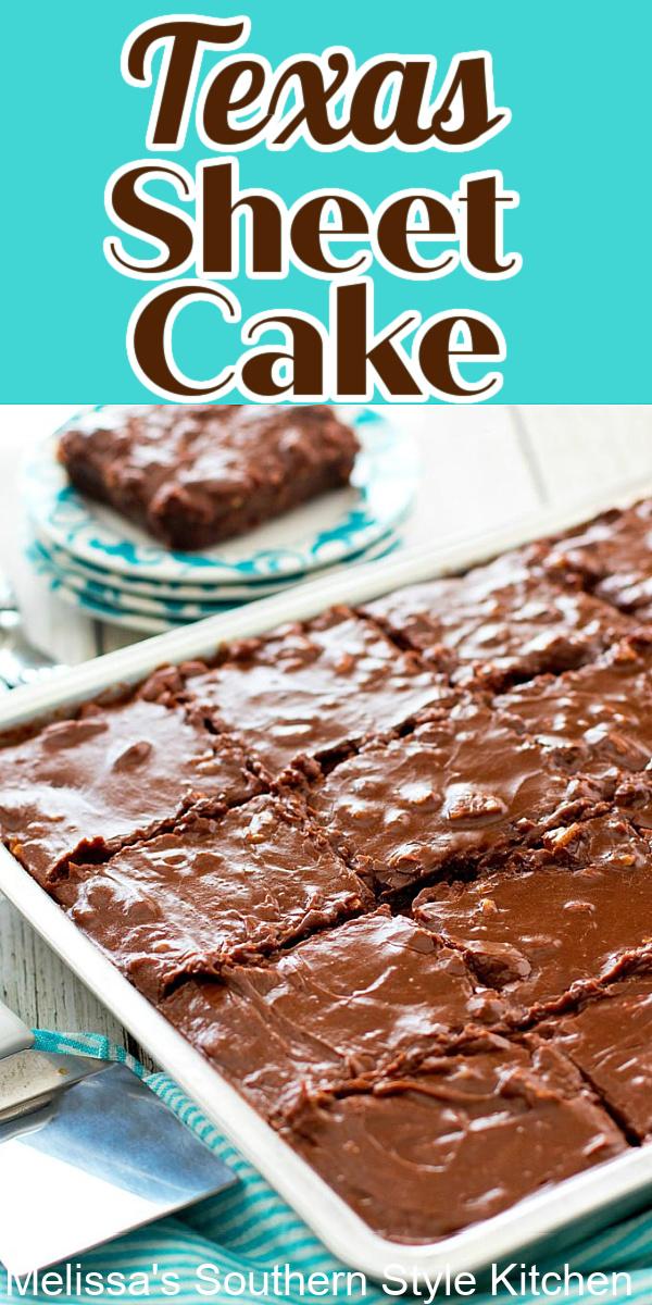 Rich and fudgy Texas Sheet Cake #texassheetcake #chocolatecake #chocolate #cakes #cakerecipes #desserts #dessertfoodrecipes #holidaybaking #southernfood #southernrecipes #chocolate #picnicdesserts
