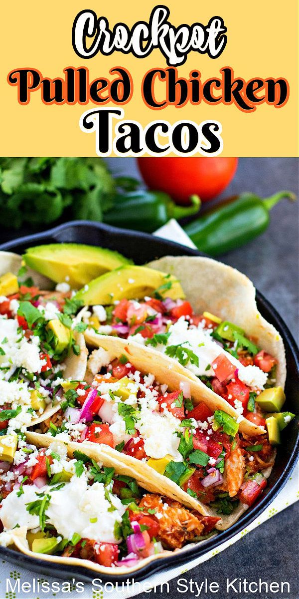 Simmered in a slow cooker these Crockpot Pulled Chicken Tacos will create a homestyle fiesta any night of the week #chickentacos #crockpotchicken #tacos #easychickenbreastrecipes #chicken #slowcookerchicken #crockpotrecipes #TacoTuesday #dinnerideas #dinner #southernfood #southernrecipes #mexicanfood