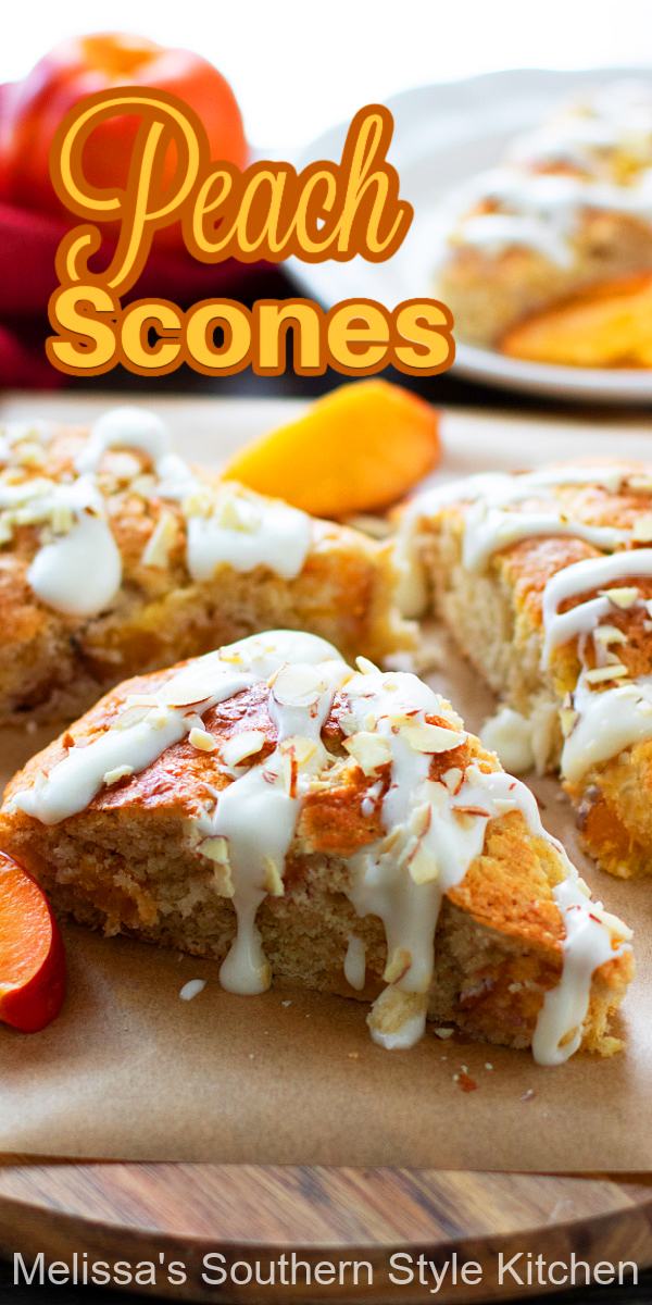 These vanilla cream glazed fresh Peach Scones can be served with a side of whipped cream or honey butter #scones #peachescones #peaches #freshpeachrecipes #peachdesserts #brunchrecipes #breakfastrecipes #teaparty #southernpeaches